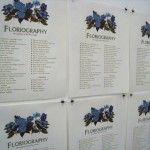 Floriography: the tradition of the flower code